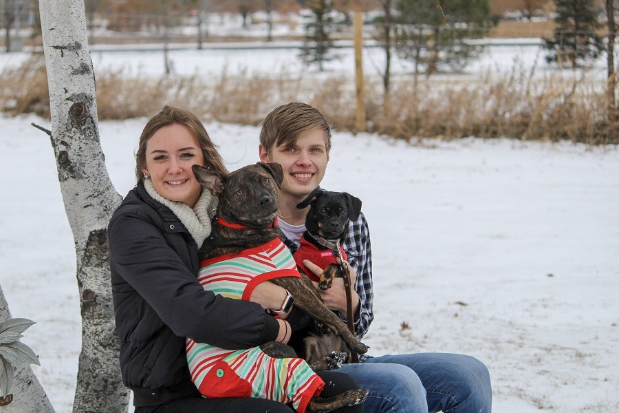 Family Session - Nate, Alli & Dogs