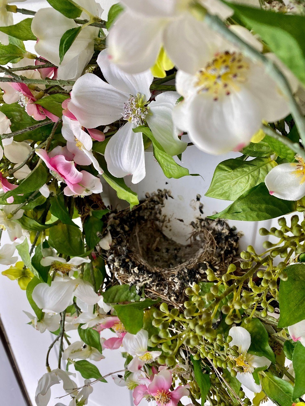 Birds nest in wreath