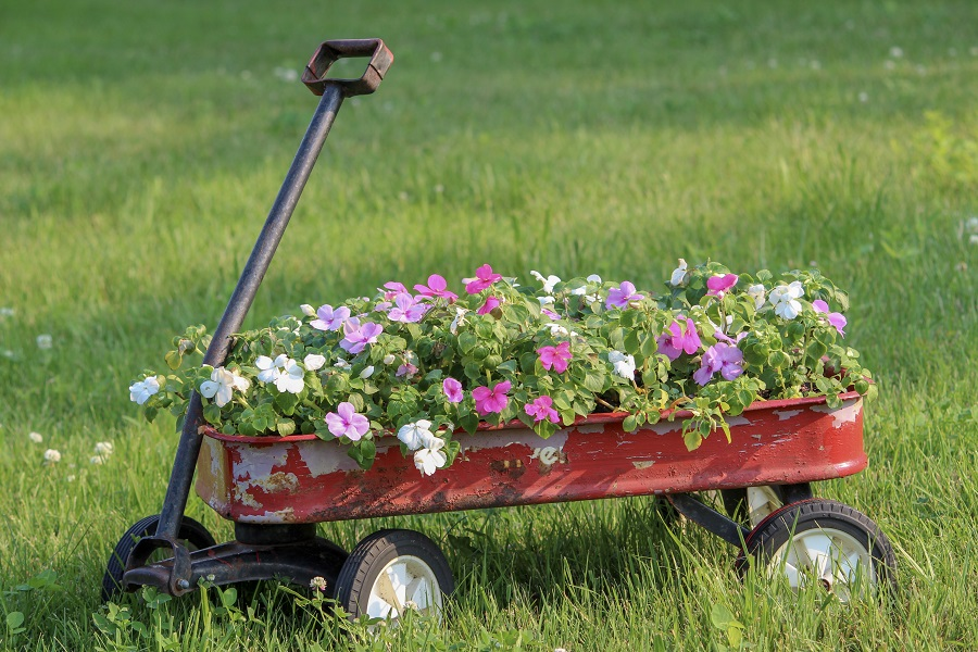 Flowers in Wagon